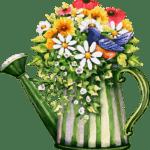 пересадим крупное  растение